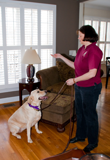 Dog Training in Wake Forest, NC